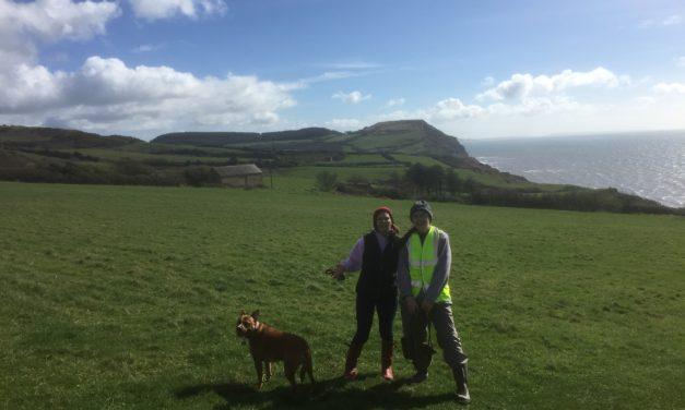 LBL Walk – Stonebarrow