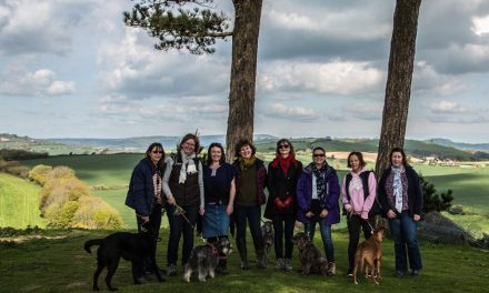 LBL Walk – Colmers Hill