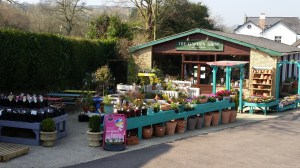 Coffee Morning – The Garden Shop, Colyton