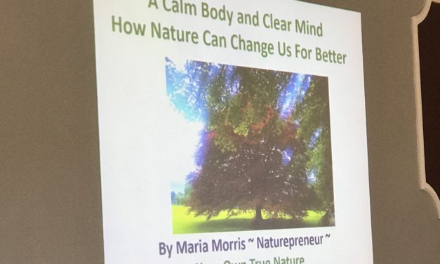Bridport Networking – Calm Body & Clear Mind