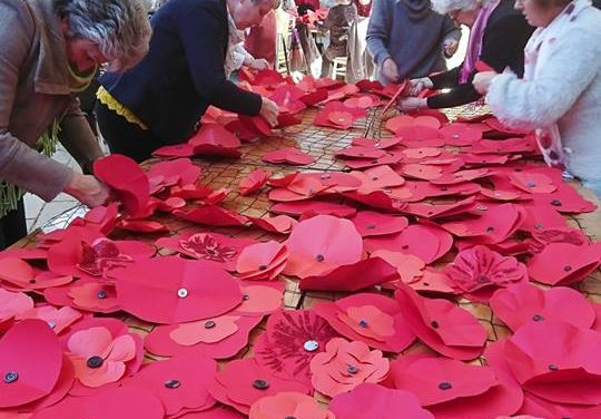 Help Making Poppies – Symondsbury Estate